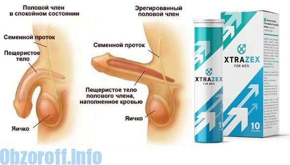 Erekció növelése népi gyógymódokkal