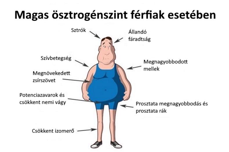 mi a gyenge erekció a férfiaknál mekkora legyen a normális pénisz hossza
