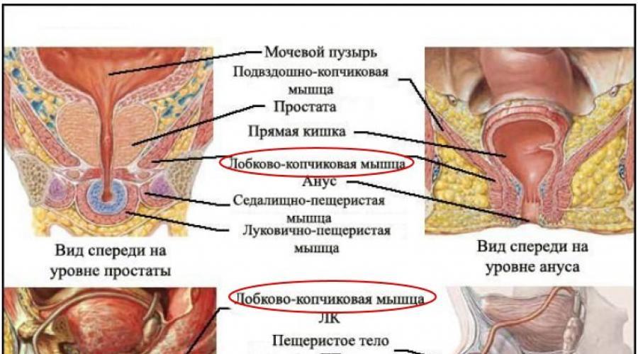 mutassa meg a pénisz behelyezésének módját pénisznagyobbítás mellékhatások