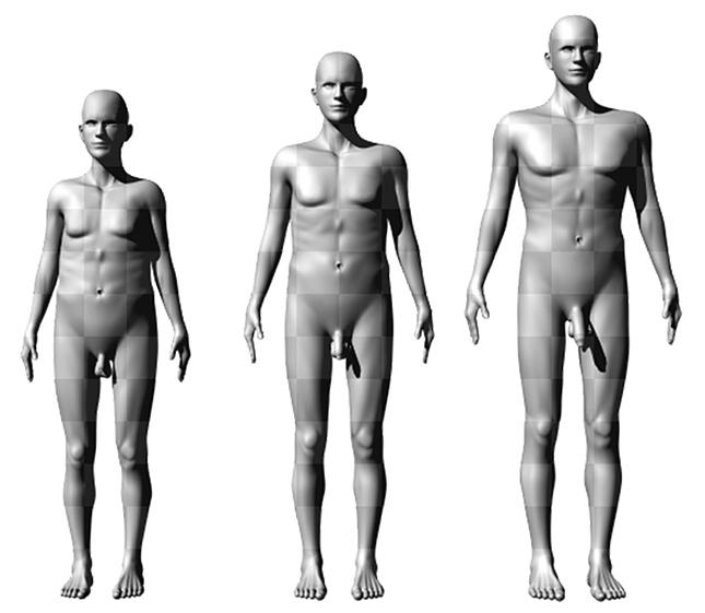 férfi magasság péniszméret szerint hogyan növelheti egyedül a péniszét
