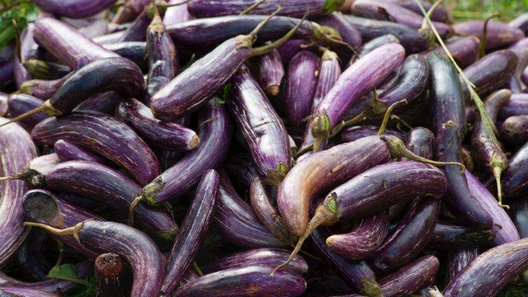 miért változik lila a pénisz erekció után a prosztata fájdalma